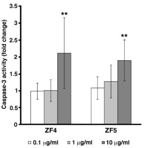 Figure 2. Caspase-3 activity is induced by late stage developmental extracts. Caspase-3 activity was evaluated in control and exposed cells by ELISA assay. hASCs were treated with ZF4, or ZF5 at the concentrations of 0.1, 1, and 10 μg/ml for 72 hours. Data are presented as ratio of treated cells to control cells (fold change). Caspase-3 activity is significantly increased in both ZF4 (10 μg/ml) and ZF5 (10 μg/ml) treated cells, as compared with control cells (**p < 0.01). Data are expressed as mean ± standard deviation of three independent experiments performed in duplicate on hASCs derived from three independent subjects. Statistical analysis was determined by t-test method.